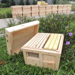 Thùng ong thông minh